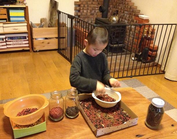 豆の仕分け作業完了!20121215-1