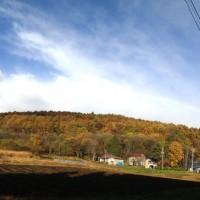 綺麗な虹がかかりました 20121108-1