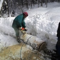 今日は除雪と楢丸太の搬出作業~今日の作業風景~