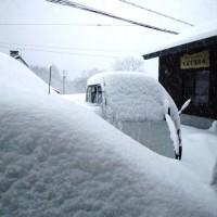 この時期に一晩で30cmの積雪が。。
