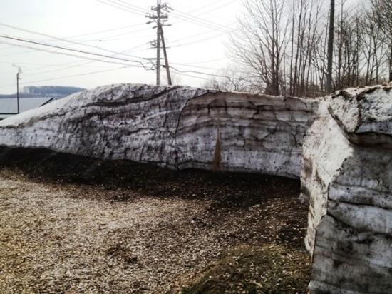 我が家の畑の積雪20120416