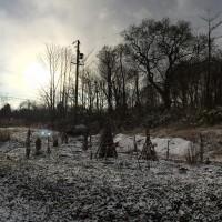 初雪より一夜明けて20141203