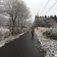 朝の散歩の風景20141205~景色が一面白銀に変わってきました~