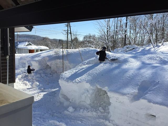氷点下の気温の中、元気にかまくら作り!20141228
