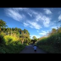 散歩の風景20120910早朝