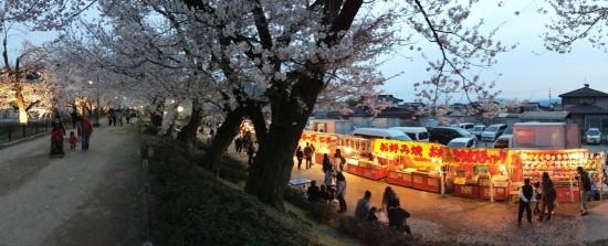 臥竜公園の夜桜20150412