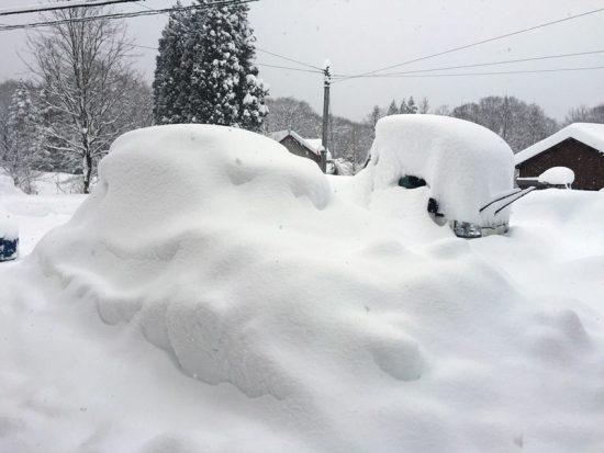ようやく降雪が弱まりました20171228