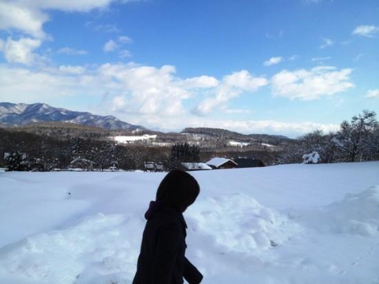 天気が良かったので昼の散歩に出ました