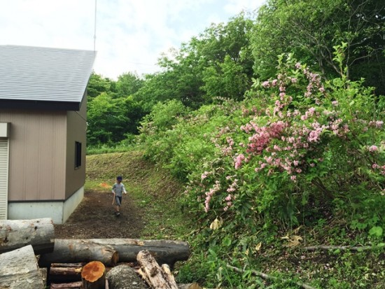 信州・黒姫今日の風景20150527-2