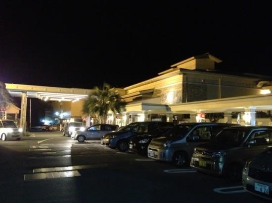 湯の華アイランドへ 岐阜銘木市場へ20130110-5