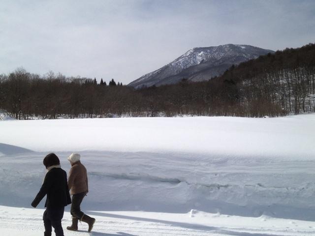 昼の散歩の風景 20130214