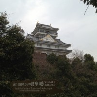 岐阜銘木市場へ20130313