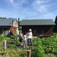 我が家の庭の様子20150712~作物の収穫が始まっています~
