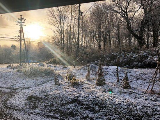 初雪20181123