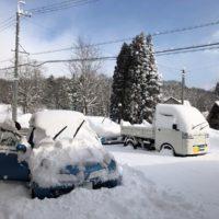 積雪量が少ない冬20190317