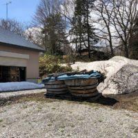 欅巨大輪切りの加工を開始20190416