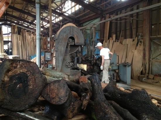 黒柿・梅の木の製材20130823
