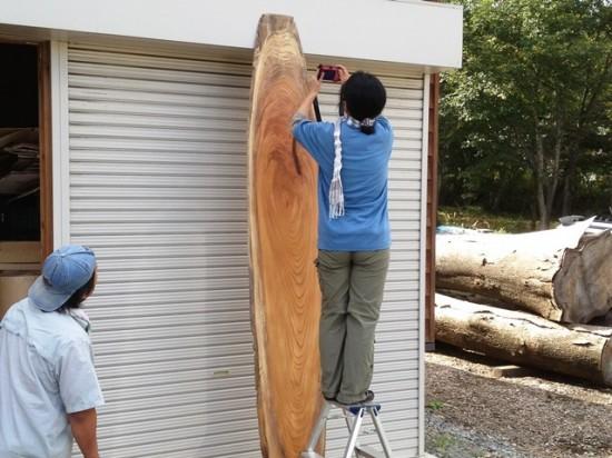 今日の作業~欅大型看板材写真撮影・画像加工、栃丸太皮剥き・野積み~4