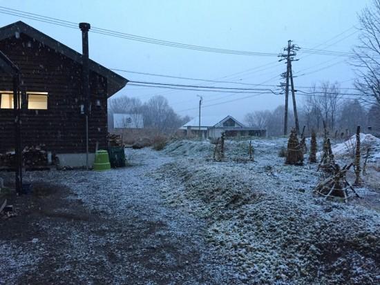 午後に初雪が降り始めました20151125