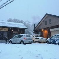 今日の信州・黒姫20151204~雪が本格的に降っています~