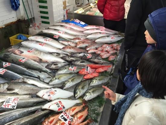 新潟・寺泊「魚の市場通り」へ20151231-2