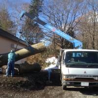 欅丸太を製材所貯木場へ移動20131119