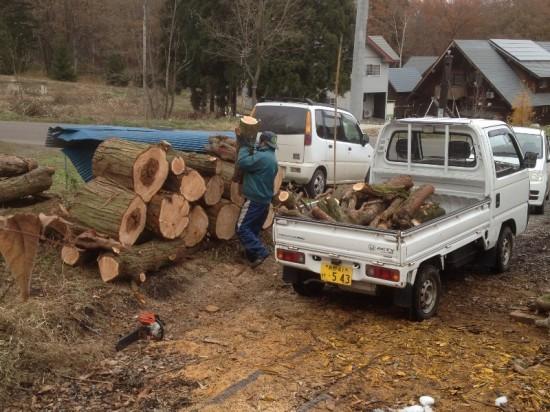 今日の作業20131120~巨木搬出作業~3