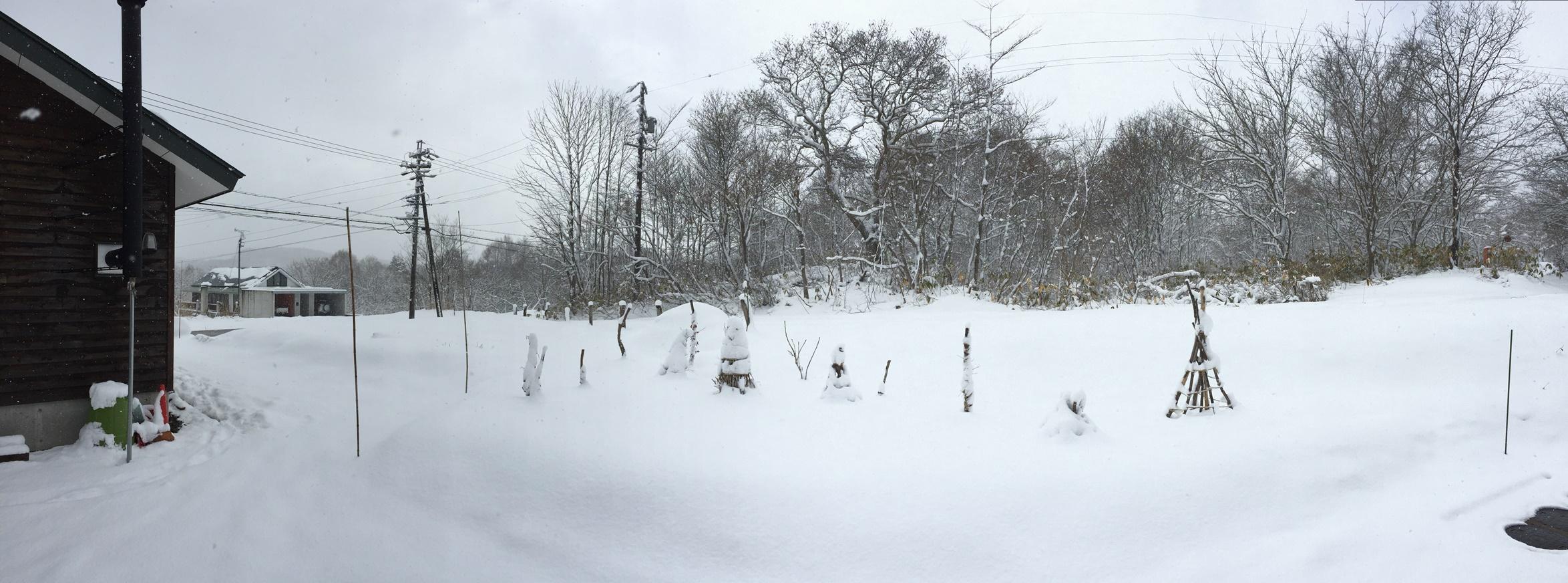 景色が再び真っ白に20160325