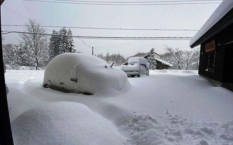 ようやく冬らしく。。20200211
