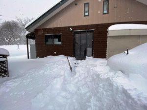 ようやく冬らしくなりました20200211-2