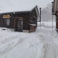 久しぶりの大雪20140205