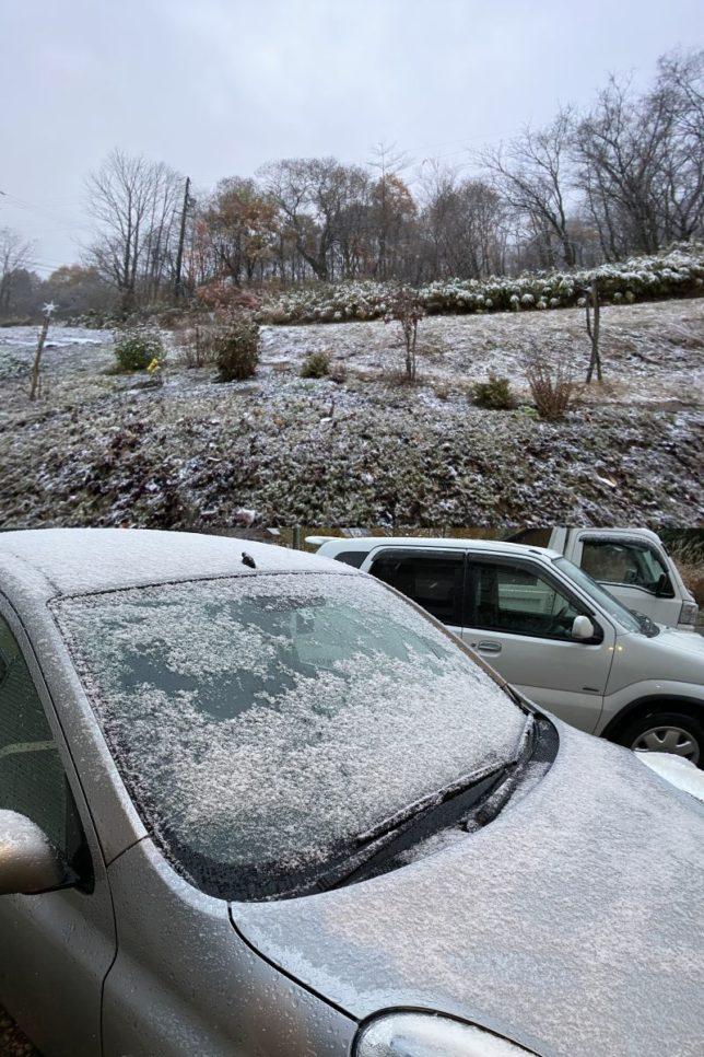 初雪20201110-2