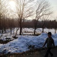 朝の散歩、再開!20140402