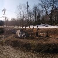 我が家の庭の風景20140414