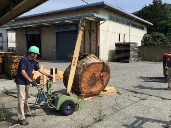 デッキソーを使用して欅(ケヤキ)巨木輪切りを製材20160723