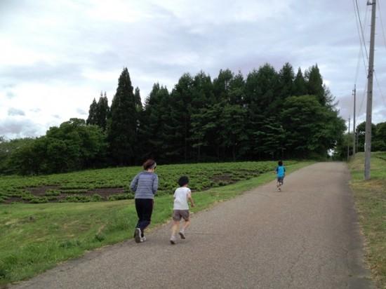 今朝の信州・黒姫20140607