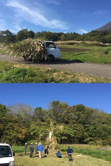 どんど焼き萱刈20161016-2