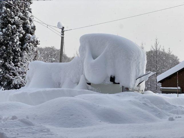 大雪20201215-20-6
