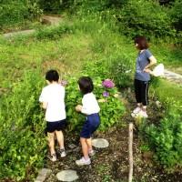 子供達のジョギング後の楽しみ20140716