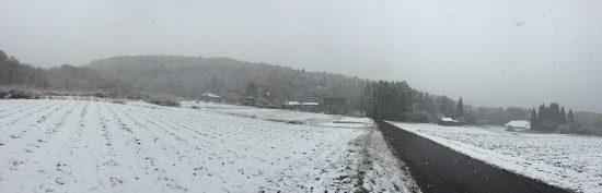 初雪20161109結構良い降りです。。