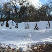 今日の信州・黒姫20161207~今朝は10cmの積雪・大型一枚板の加工が進んでいます~