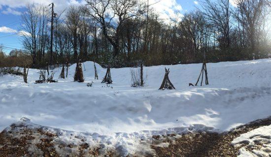 今日の信州・黒姫20161207~我が家の庭には今朝、10cmの積雪がありました~
