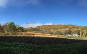 信州・黒姫高原今朝の散歩の風景20141030-2