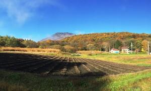 信州・黒姫高原今朝の散歩の風景20141030-3