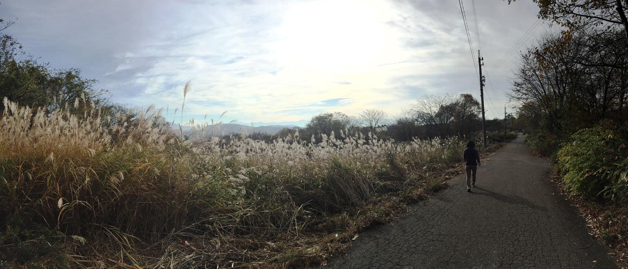 信州・黒姫高原今朝の散歩の風景20141030-1