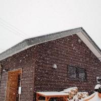 今日は真冬並みの大雪です(+o+)