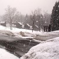 大粒の雪が。。。!