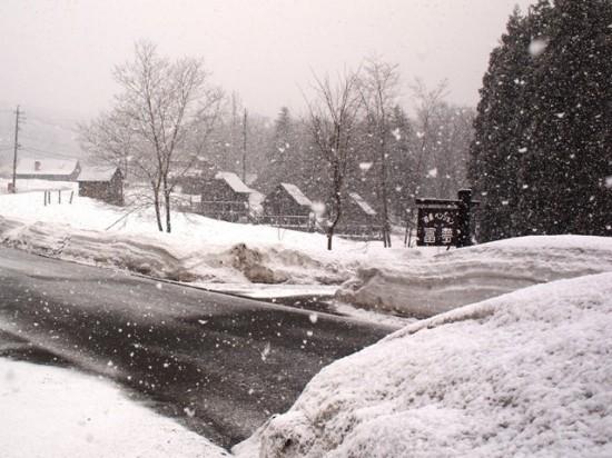 大粒の雪が。。。!20120328