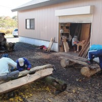 今日の作業20131109~山桜・ケンポナシ・キハダ・シナ一枚板の皮剥き・ワイヤ磨き~