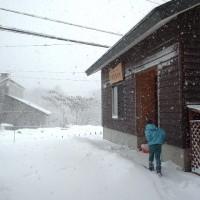 大雪来襲!20121201